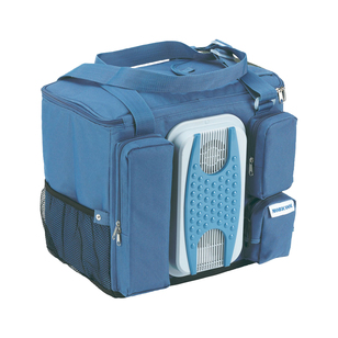 Dometic 12V Coolfun Cooler bag
