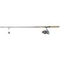 Shimano Soft Plastic Spin Combo Grey