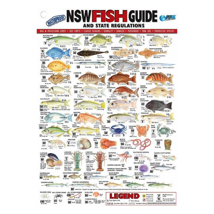 Australian Fishing Network State Fish ID Card New South Wales