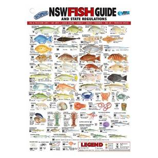 Australian Fishing Network State Fish ID Card New South Wales