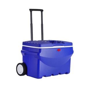 Willow 50L Quickserve Cooler