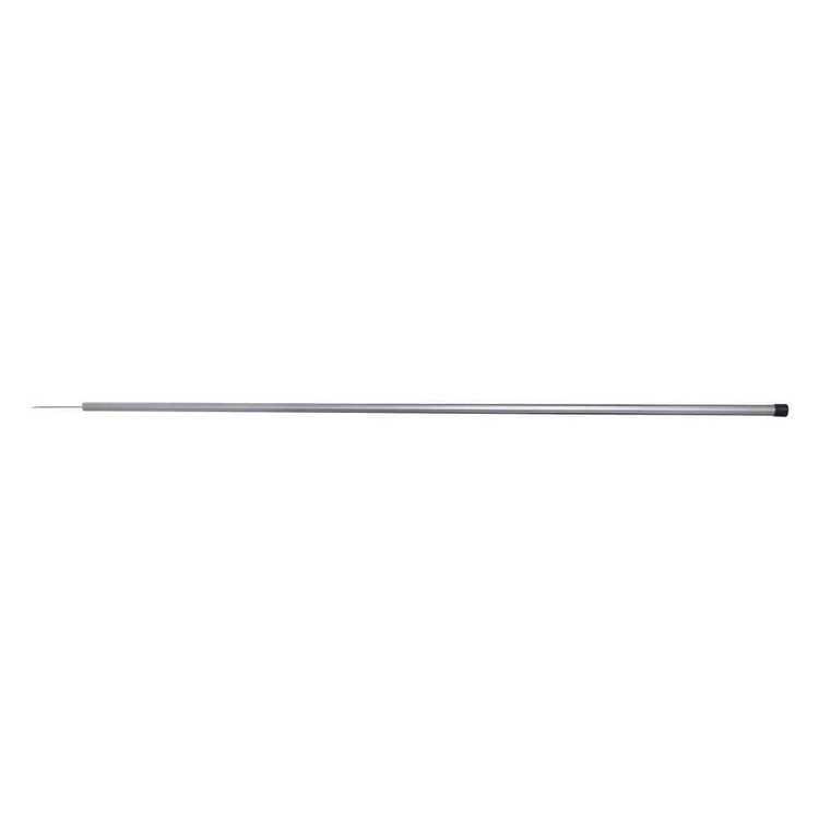 Neptune Single Prong Spear