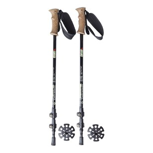 Denali Explorer II Carbon Fibre Walking Poles
