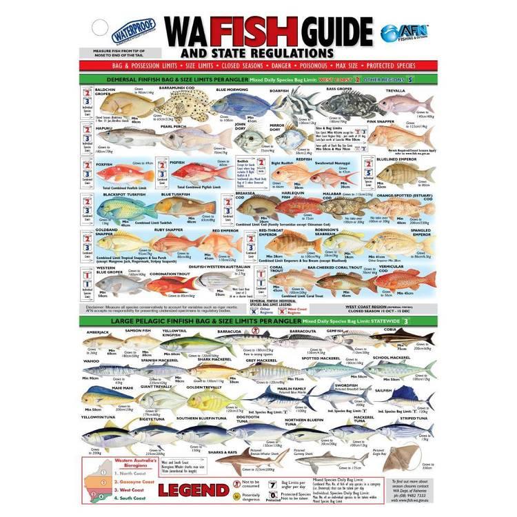 Australian Fishing Network State Fish ID Card Western Australia