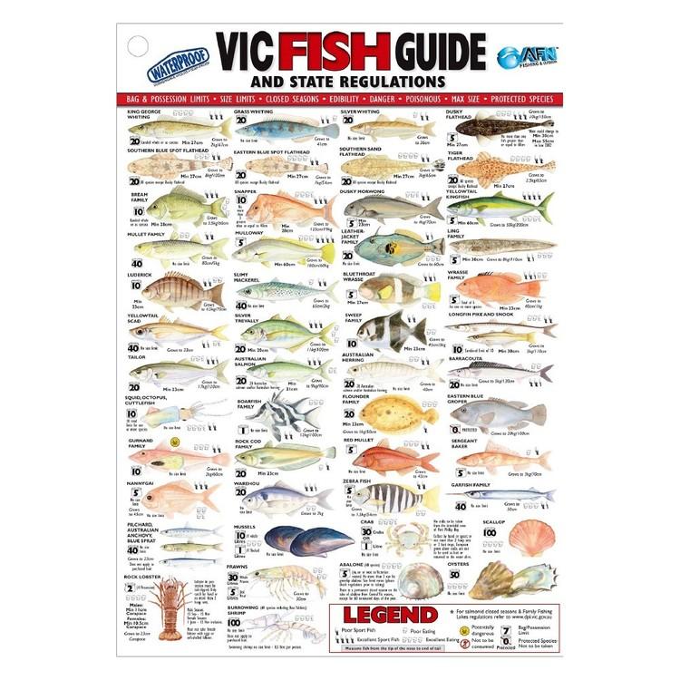 Australian Fishing Network State Fish ID Card Victoria