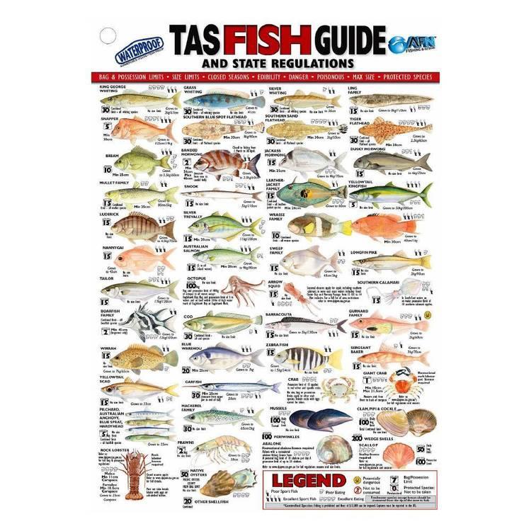 Australian Fishing Network State Fish ID Card Tasmania