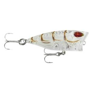 Storm Gomoku Popper 40 mm Lure