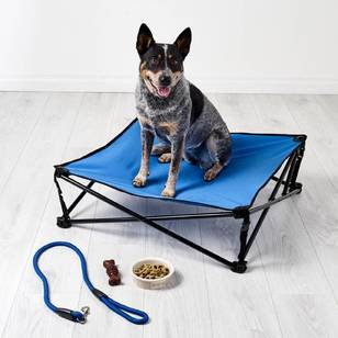 Spinifex Pet Stretcher Bed