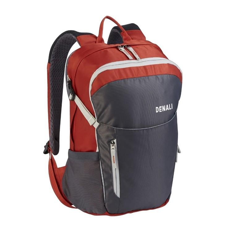 Denali Wayfarer 20L Daypack