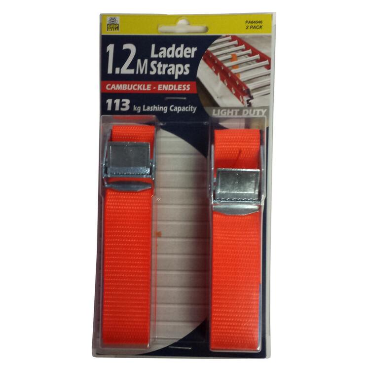 Gripwell 25mm Ladder Strap 2 Pack