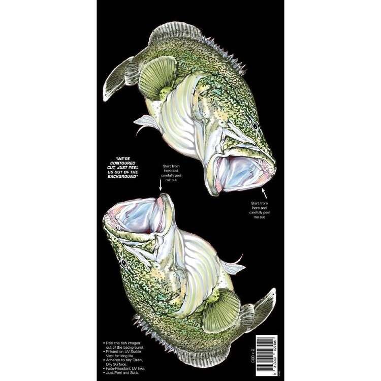 AFN Retro Style Fish Sticka Murray Cod