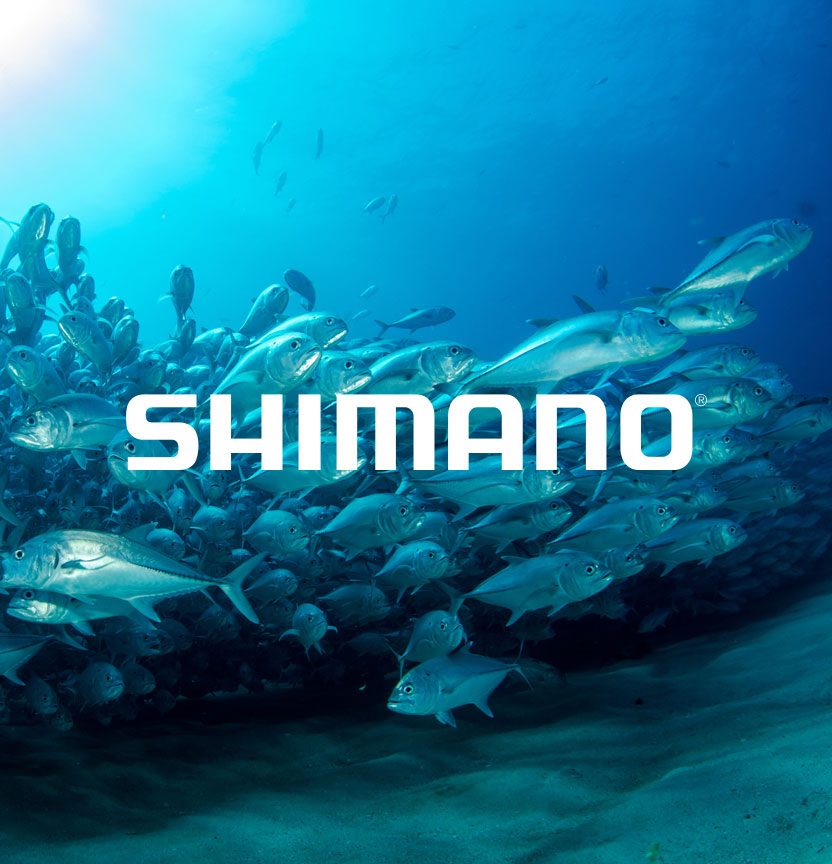Shop The Shimano Range
