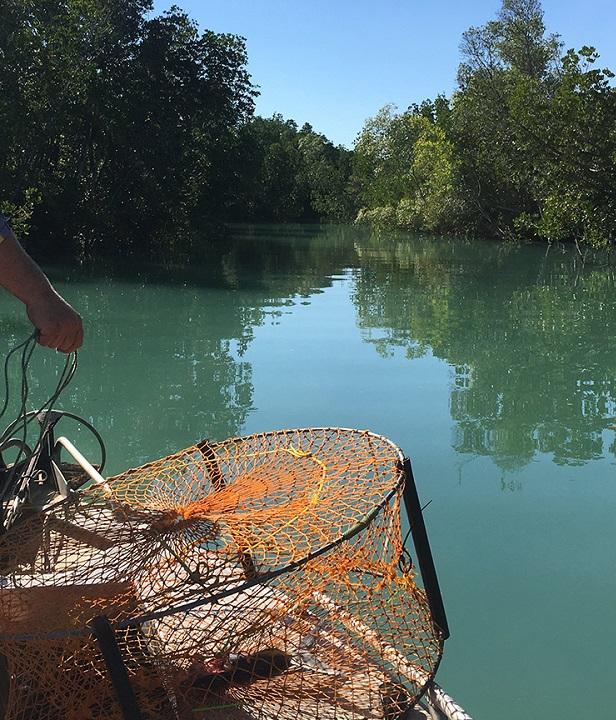 Fishing At Anaconda - Lines, Lures, Jigs, Hooks + More At
