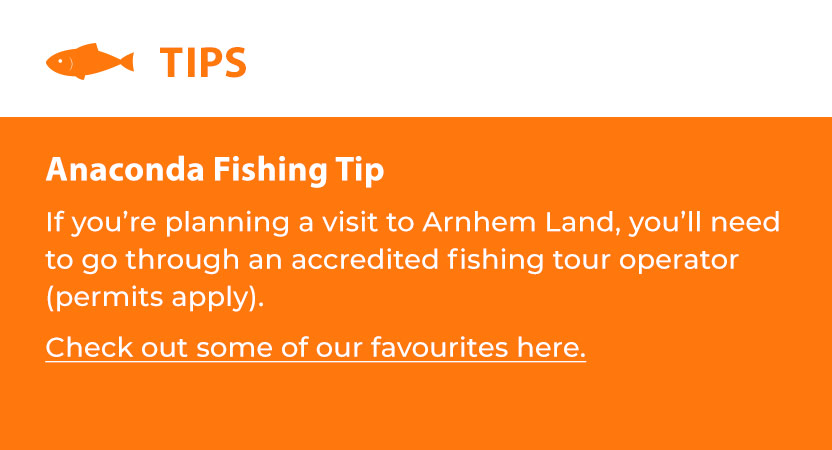 Anaconda Fishing Tip
