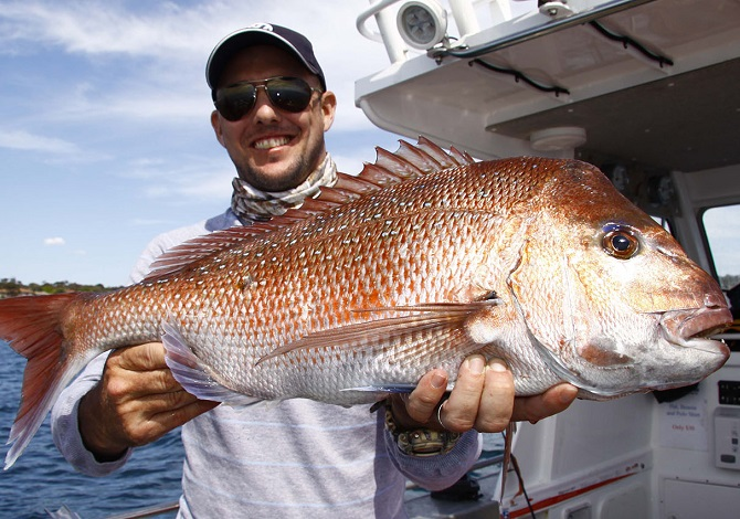 Snapper On The Drift