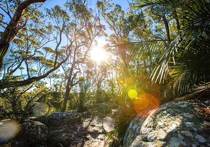 Top five Easter camping locations around Sydney